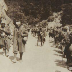 Campagna di grecia (fonte: archivio citterio)
